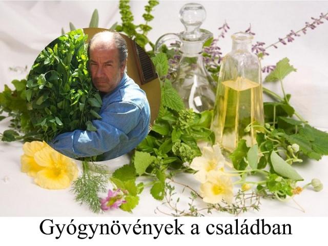 Gyógynövények a családban