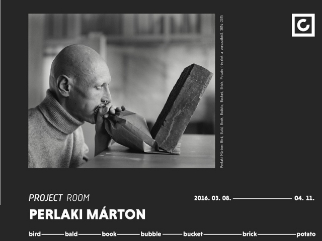 Perlaki Márton:Bird, Bald, Book, Bubble, Bucket, Brick Potato