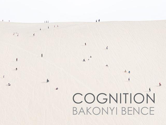 Bakonyi Bence: Észlelés